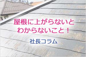 屋根に上がらないとわからないこと!