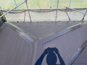 屋根塗装 ファインパーフェクトベスト トリノブラウン